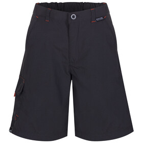 Regatta Sorcer Shorts Kids Ash